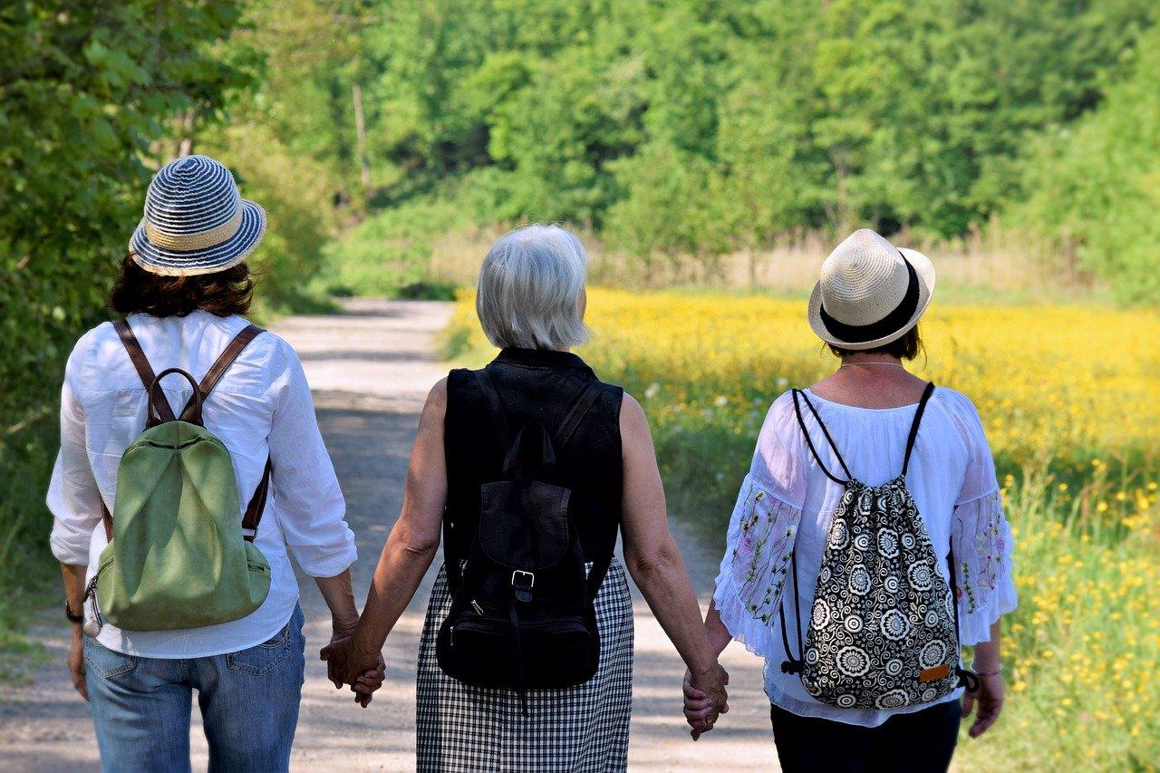 Alimentação saudável ajuda aliviar sintomas da menopausa